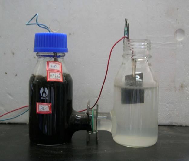 Mikroobne kütuseelement