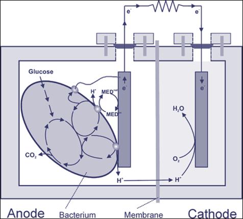 Mikroobse kütuseelemendi skeem