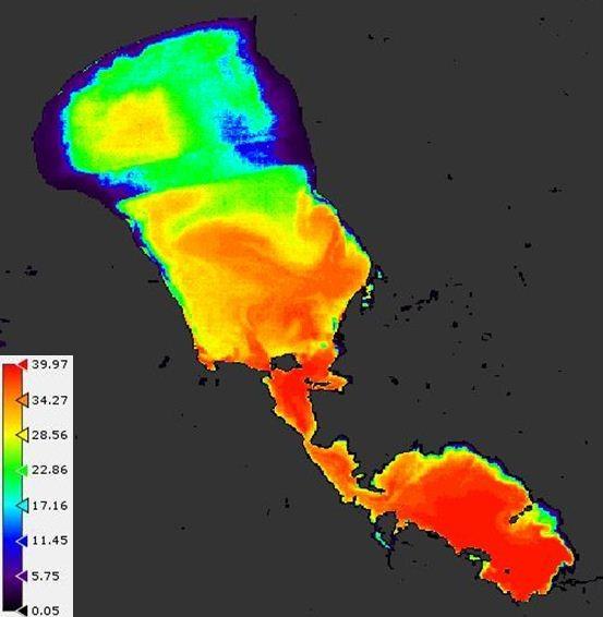 Joonis 3. Peipsi järve klorofülli kontsentratsioon (mg/m3) 05.06.2008 satelliitsensoril MERIS