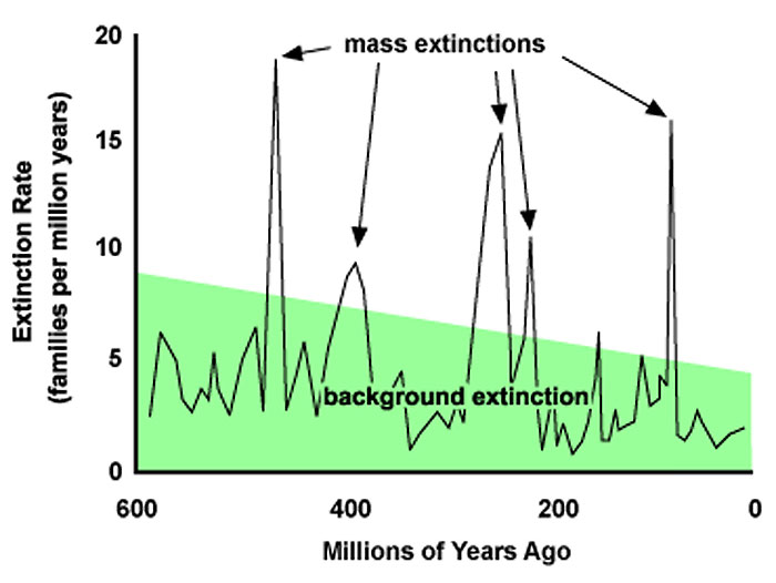 mass_extinctions